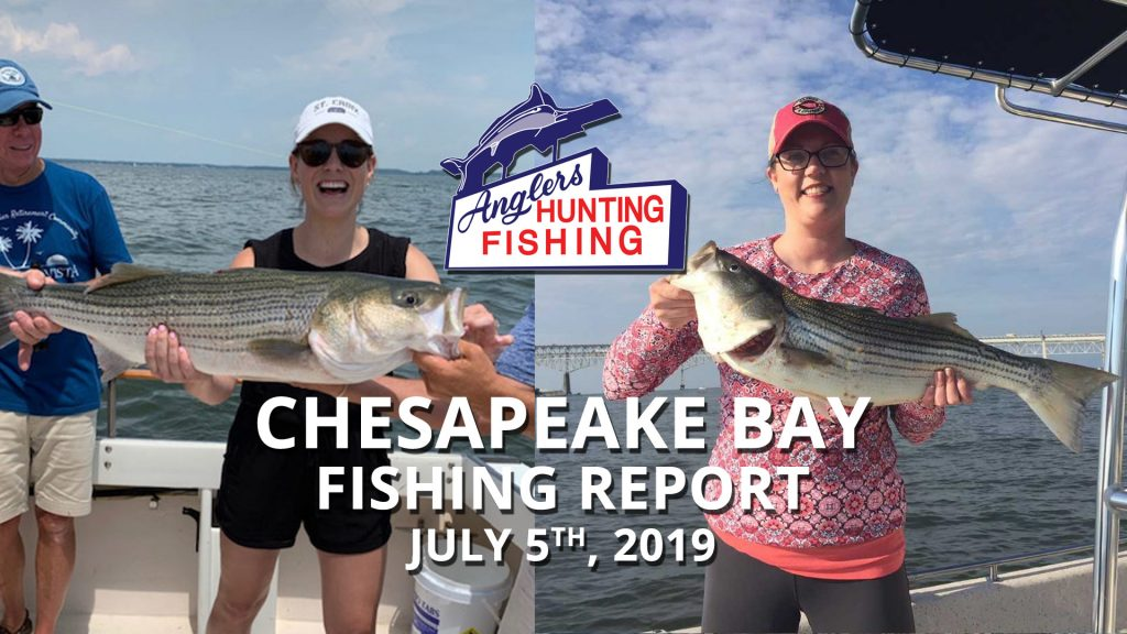 Chesapeake Bay Fishing Report - July 5th, 2019 > Anglers Sport Center