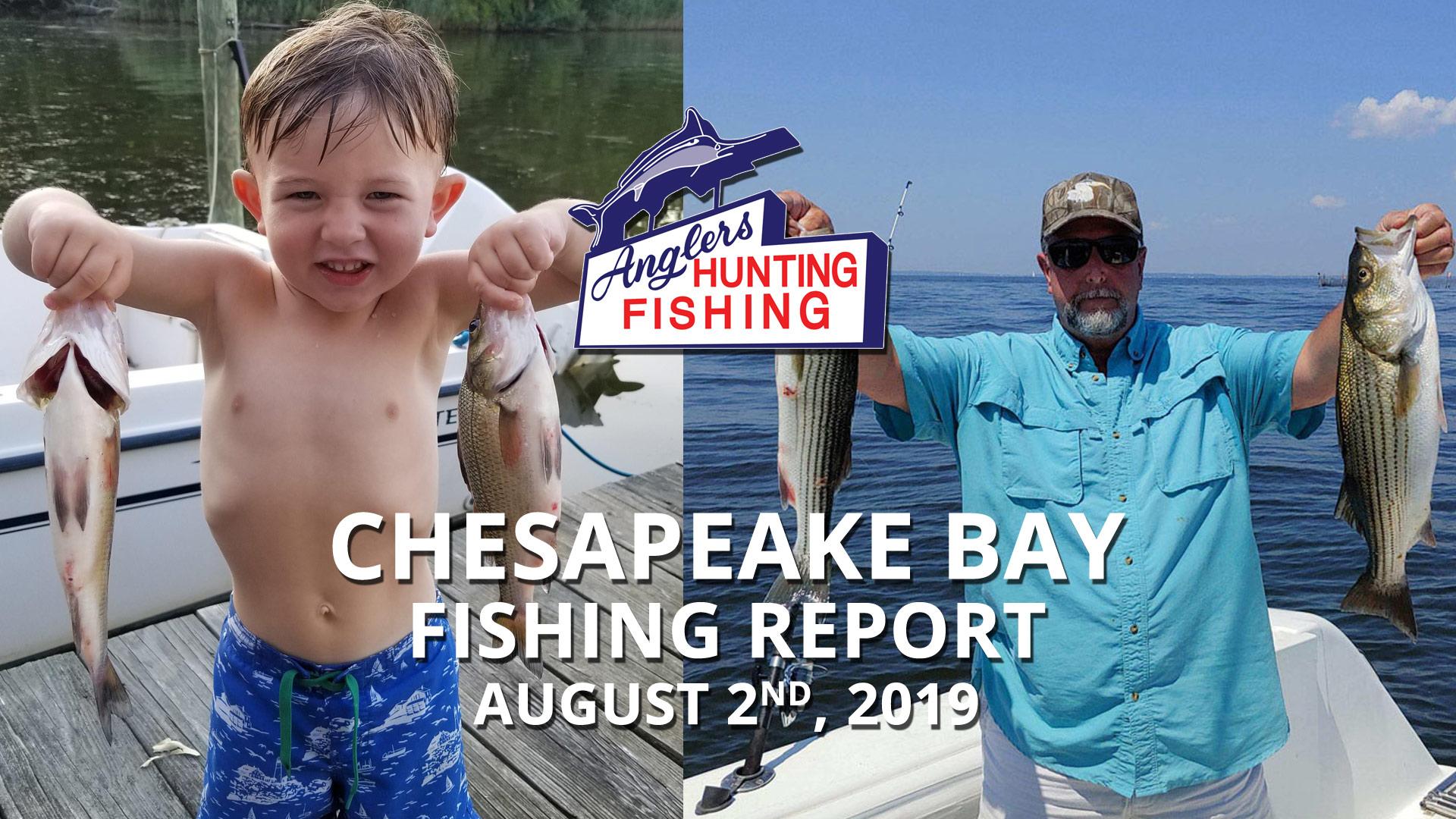 Chesapeake Bay Fishing Report - August 2nd, 2019