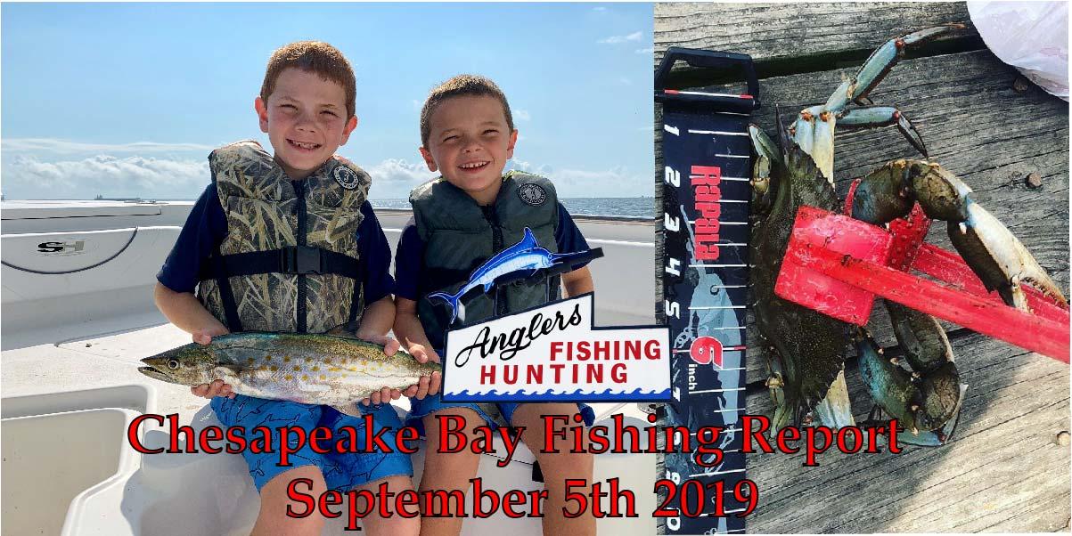 Chesapeake Bay Fishing Report-September 5th 2019