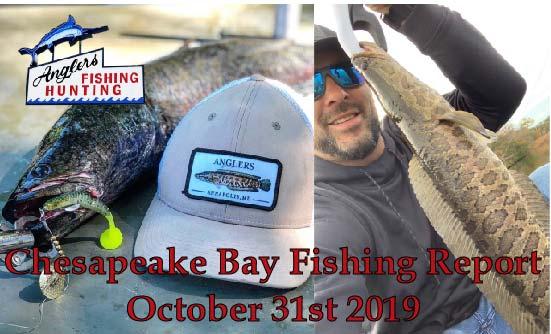Chesapeake Bay Fishing Report- October 31st 2019