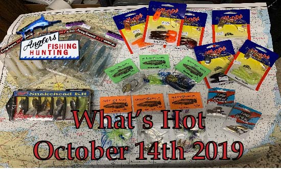 What's Hot: October 14th 2019