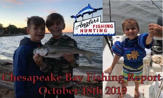 Chesapeake Bay Fishing Report- October 18th 2019