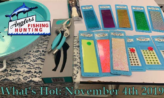 What's Hot: November 4th 2019