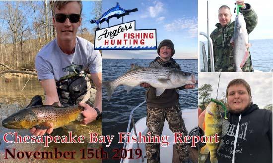 Chesapeake Bay Fishing Report: November 15th 2019